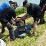Sunday (Nedeľa dospelí) - (29st May 2016) - Adults competition and weighting of catches