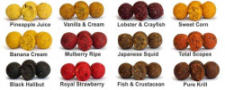 Carp Food Boilies 18mm/10kg