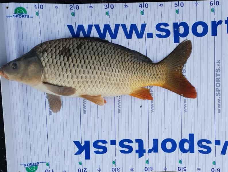 Rybársky meter podložka 130x15 cm + uvoľňovač háčikov